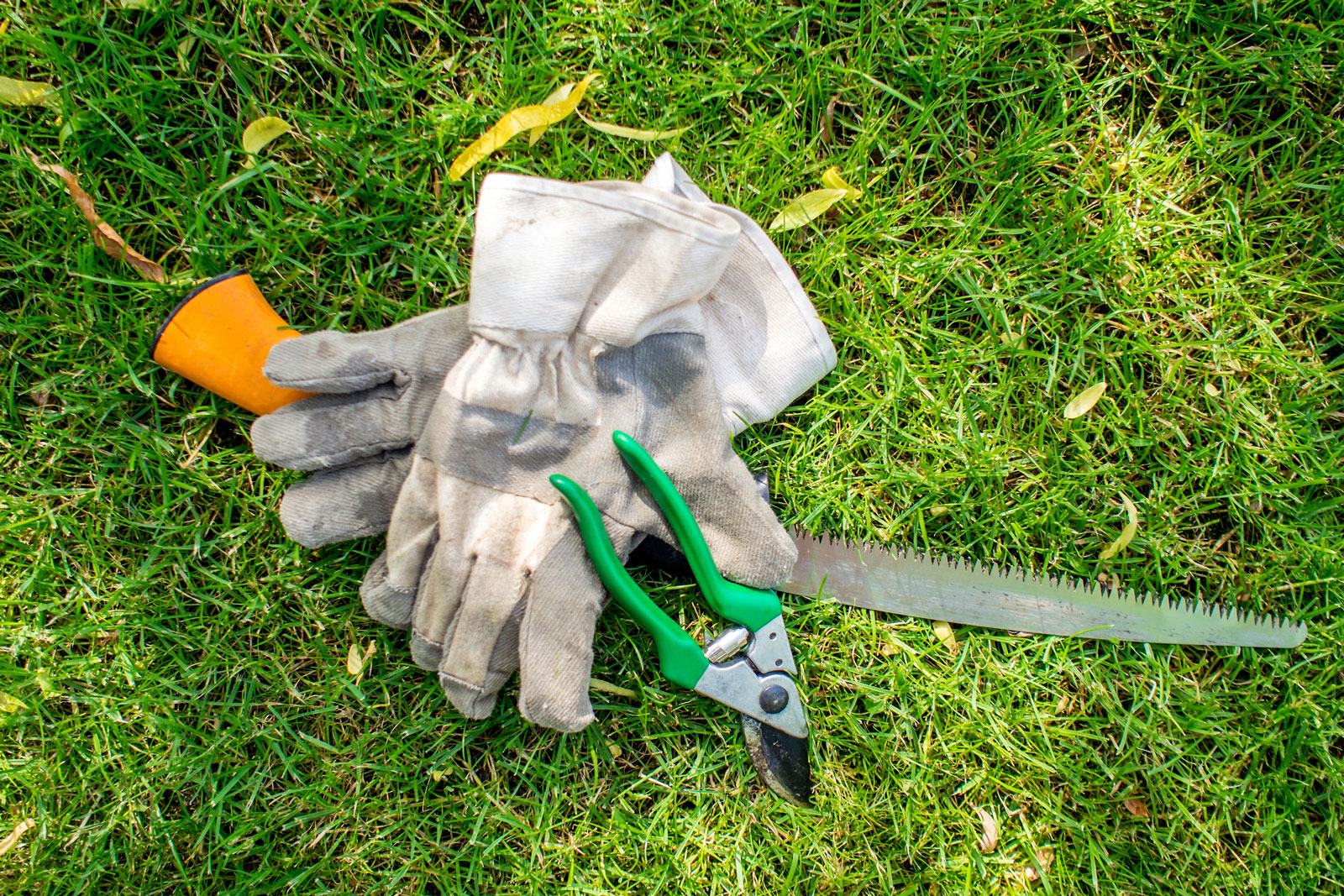 Everythign About Cleaning Garden Tools